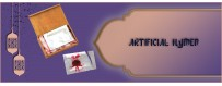 Buy Artificial Hymen Online & Restore Your Virginity | UAE